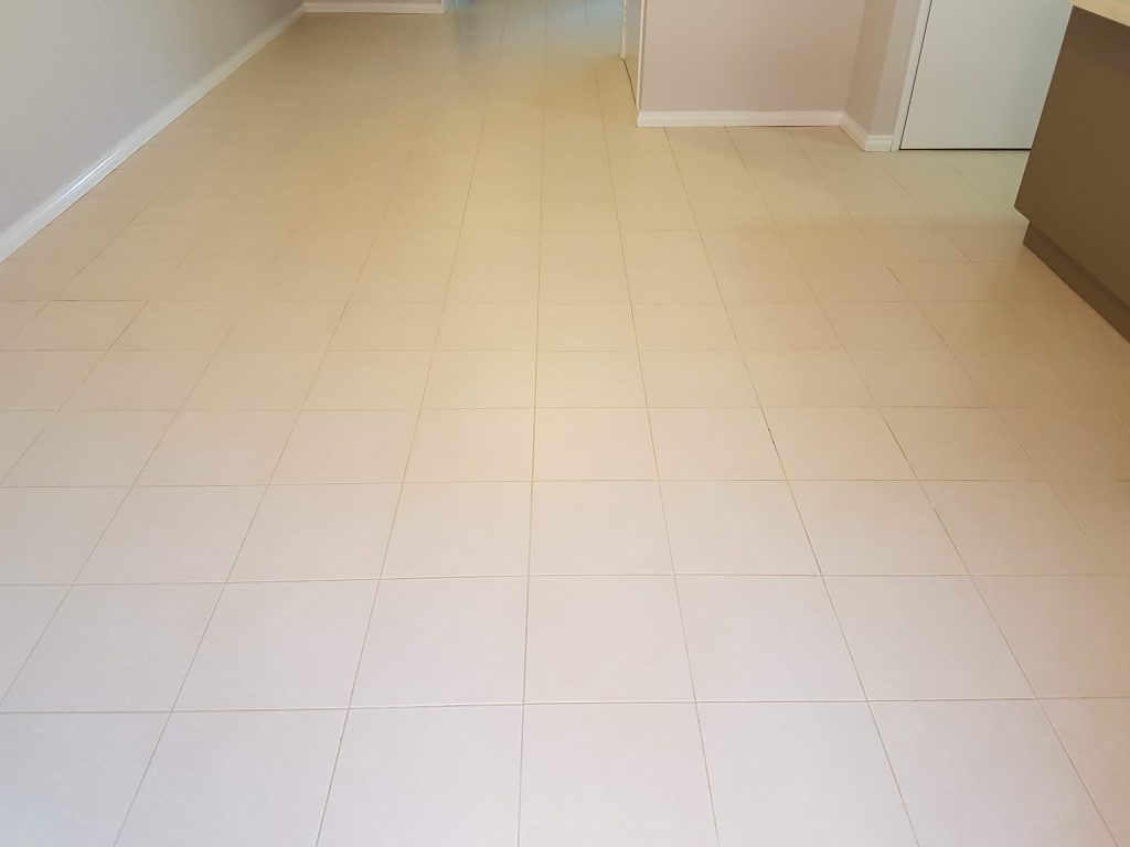 17 year old Ceramic Tiles Cleaned & Sealed